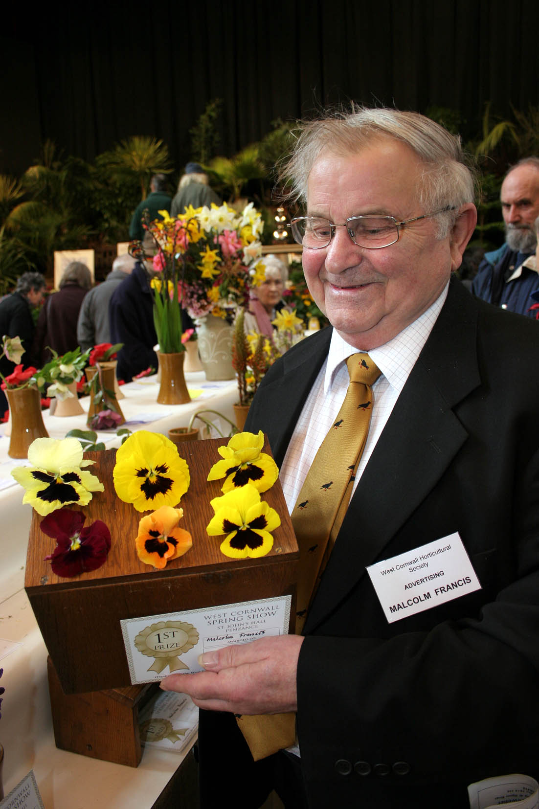 The 82nd West Cornwall Spring Show. Malcolm Francis shows off his 1st prize winning Pansies. Pic by CIOSP For Fletch