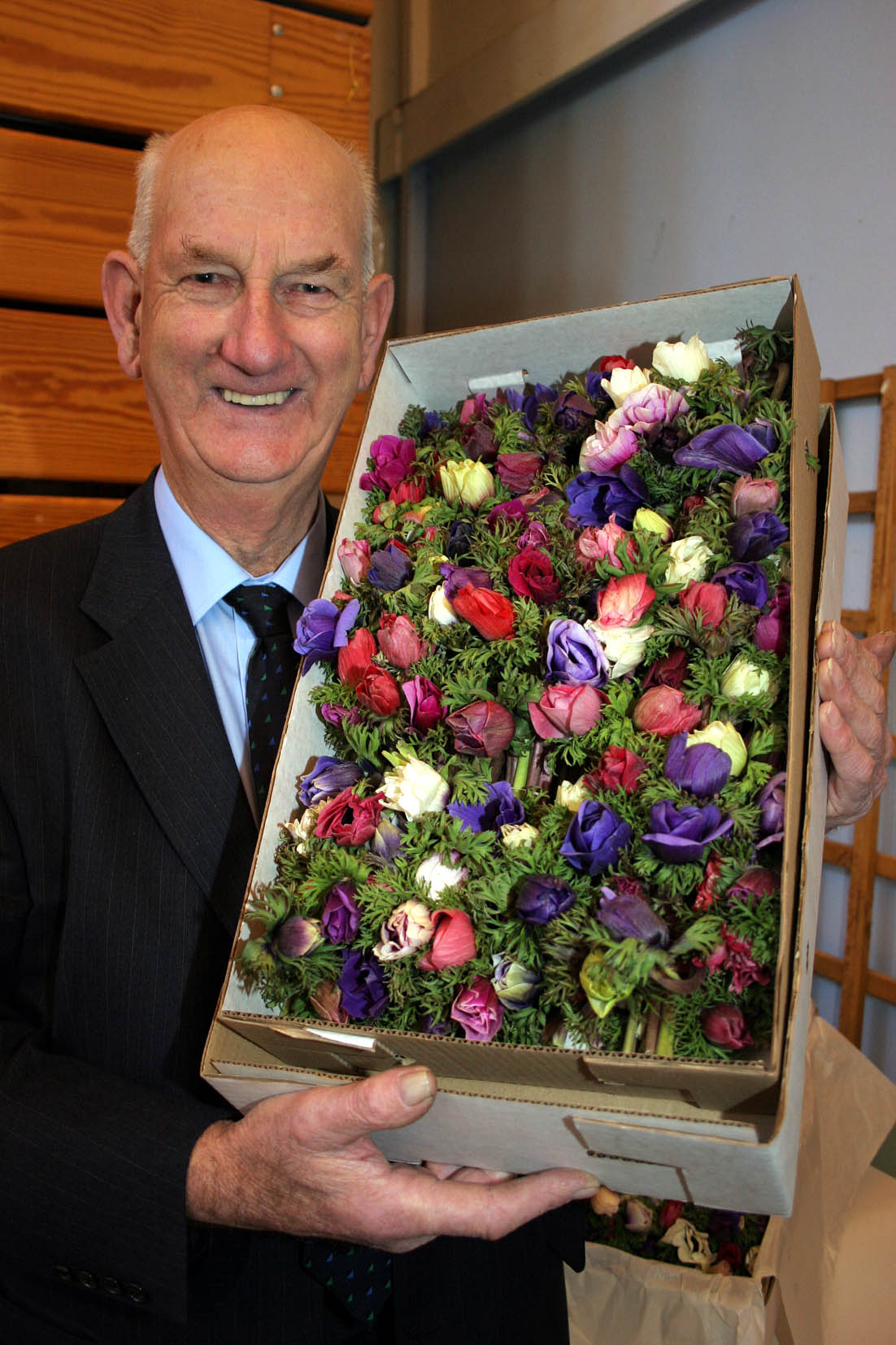 The 82nd West Cornwall Spring Show at St JohnÕs Hall Penzance. The showÕs president elect  Lloyd Reynolds with his 1st prize winning box of Anemone. Pic by CIOSP For Fletch